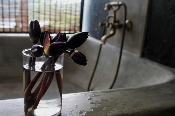 faucet-3229640_1920